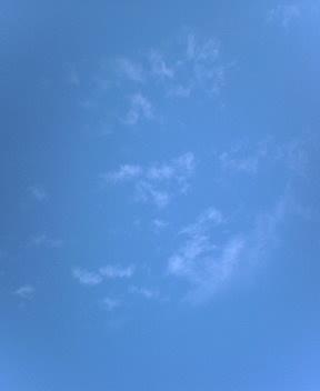 35℃の予報